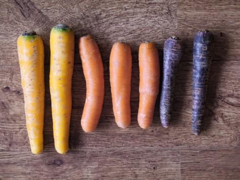 carrots resized